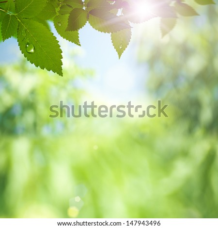 Abstract environmental backgrounds with sun rays and beauty bokeh - stock photo