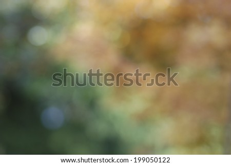 Abstract Fall Background with golden, brown and green leaves and vegetation bokeh.  Can be both horizontal and vertical.   - stock photo