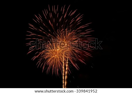 Abstract , Fireworks  on black Background