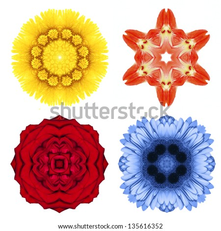 Abstract  flowers isolated over white background.