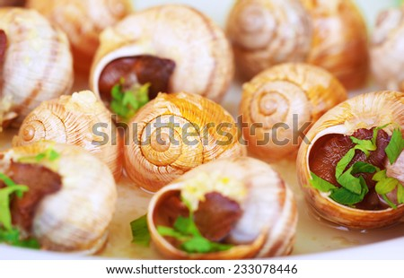 Abstract food background, tasty prepared escargot with garlic sauce, traditional French delicatessen, small cooked snails in the shells, luxury nutrition concept - stock photo