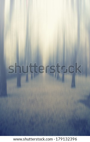abstract forest  - stock photo