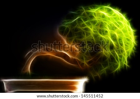 Abstract fractal Bonsai tree side view with a black background - stock photo