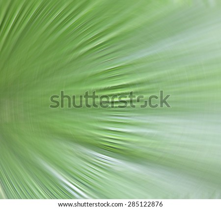 Abstract green background natural form. - stock photo