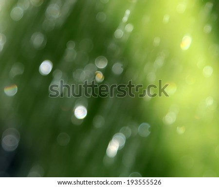 Abstract green blurred natural background with bokeh