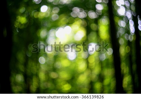 Abstract green bokeh forest, blur, blurred bokeh background - stock photo