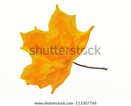 Abstract illustration of three watercolor leaf on white background. - stock photo