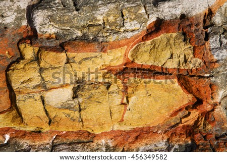 abstract lanzarote spain  texture of a broke  stone and lichens