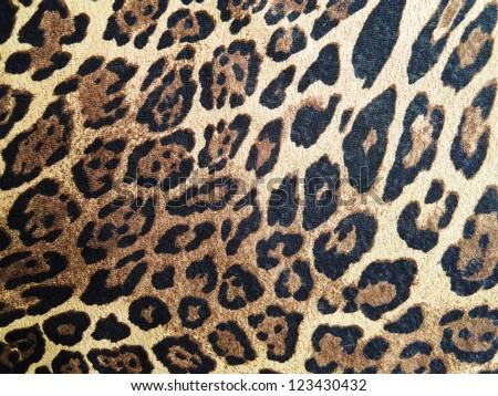 Abstract leopard macro - stock photo