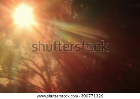 Abstract lo-fi blur sun shining through dense forest vegetation. Colorful lens flare. - stock photo