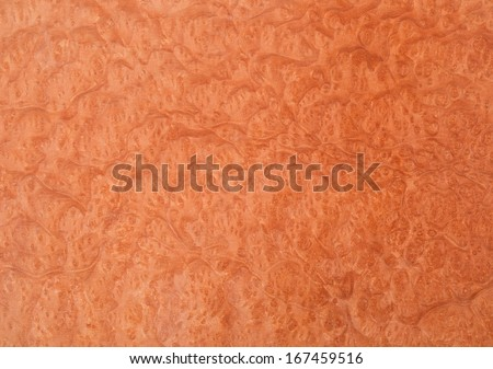 Abstract macro of wood veneer showing the detail of the wood grain. - stock photo