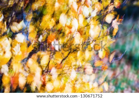 abstract motion blur picture of autumn leaves blowing in the wind - stock photo