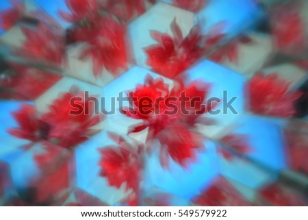 Abstract natural background, flowers
