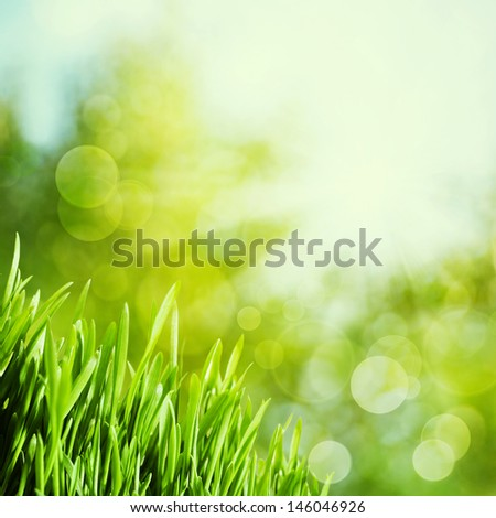 Abstract natural backgrounds with green grass and beauty bokeh - stock photo