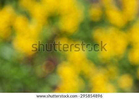 abstract natural green yellow background. boke - stock photo