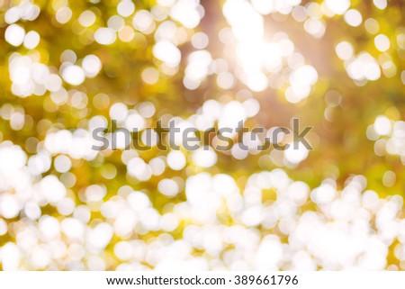 Abstract nature background - autumn bokeh - stock photo