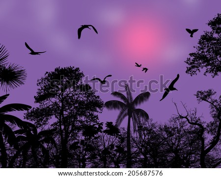 Abstract nature background with birds and trees on tropical place - stock photo