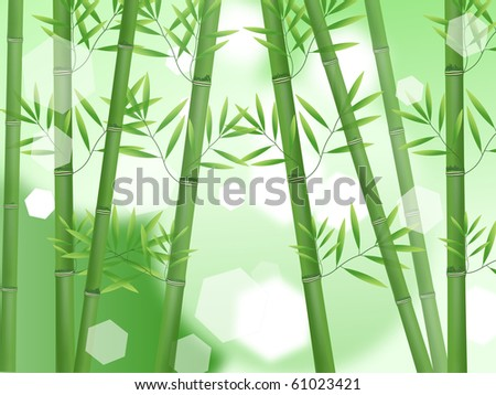 Abstract nature bamboo background - stock photo
