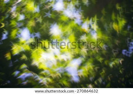 Abstract of Natural Green Yellow Star Bokeh Glitter Under Tree  Lights Blink in the Spring Sunshine Morning - stock photo