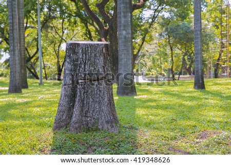 abstract of tree stump in the tropical garden - stock photo
