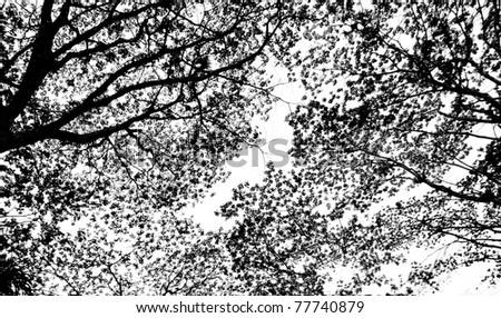 Abstract pattern from silhouettes of leaves - stock photo