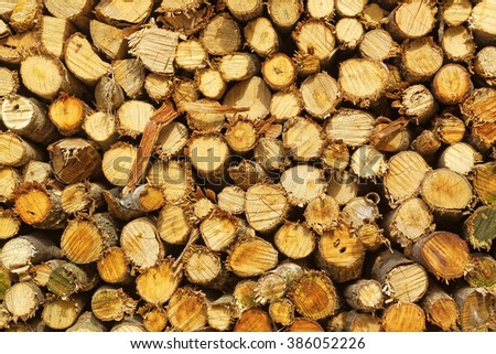 Abstract photo of a pile of natural wooden logs background - stock photo