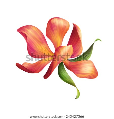 abstract red flower illustration isolated on white background, design element - stock photo