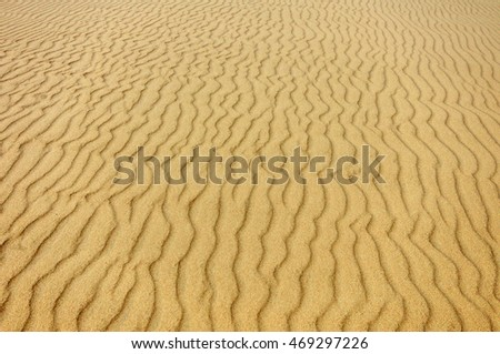 Abstract sand background