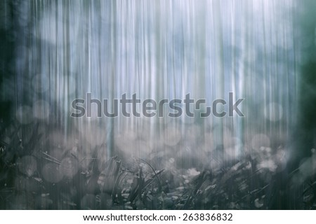 abstract springtime forest background  - stock photo