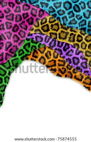 Abstract texture of colorful leopard skin isolated on white - stock photo