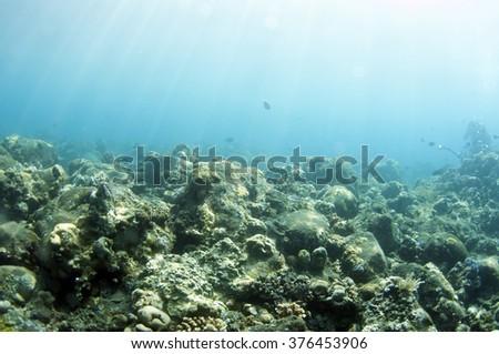 Abstract underwater scene of Tulamben, Bali, Indonesia. - stock photo