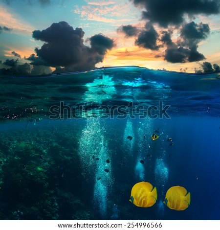 Abstract underwater scenery for your design template. Sunset sky above and coral reef with divers air bubbles and yellow fish under water line - stock photo