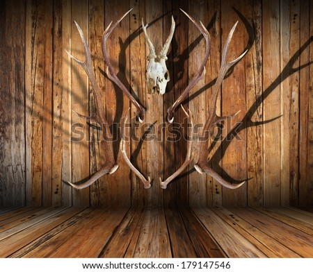 abstract view of hunting trophies on wooden finished room - stock photo
