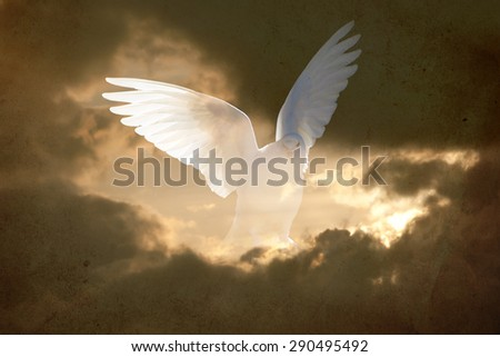 abstract vintage double exposure conceptual background representing spirit and hope with white dove in the sky  - stock photo