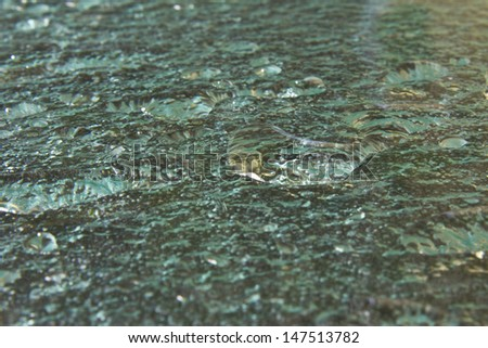 Abstract Water Drops on Glass - Water Drops on Textured Green Glass - stock photo