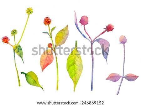 Abstract watercolor flowers. Can be used for web pages, identity style, printing, invitations, banners, cards, leaflets.