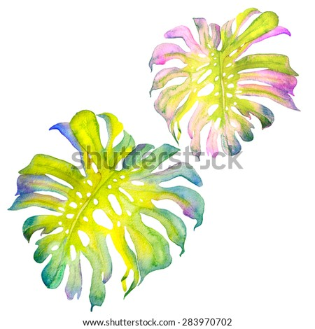 Abstract watercolor monstera leaves. Colorful watercolour illustration of a tropical leaf. - stock photo