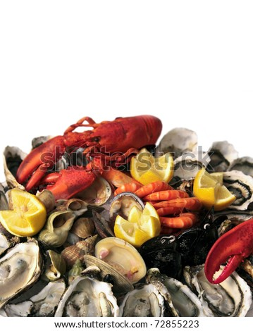 Abundance of seafood piled up: all sorts of crustacean,shellfish in big pile, ready to eat - on white background. - stock photo