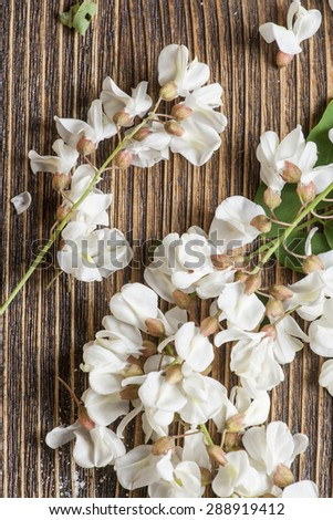 acacia flowers on woodwn table - stock photo