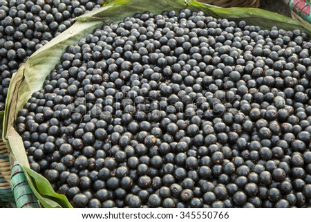 Acai, the small superfruit from the brazilian amazon, very rich in naturally nutrients and antioxidants.