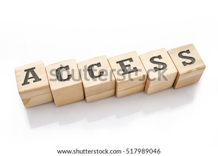 ACCESS word made with building blocks isolated on white