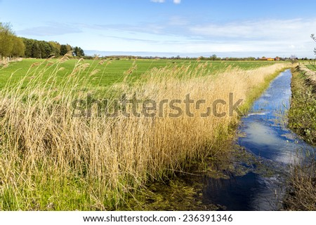 Achterwasser in Usedom at the baltic sea with village at horizon