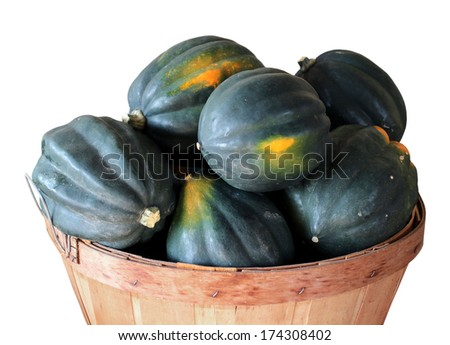 acorn squash in bucked isolated on white - stock photo