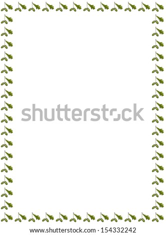 Acorns card - stock photo