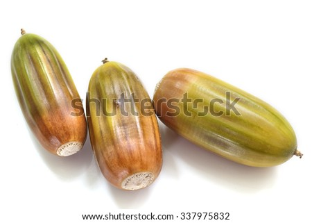 acorns on a white background. Isolated on white - stock photo