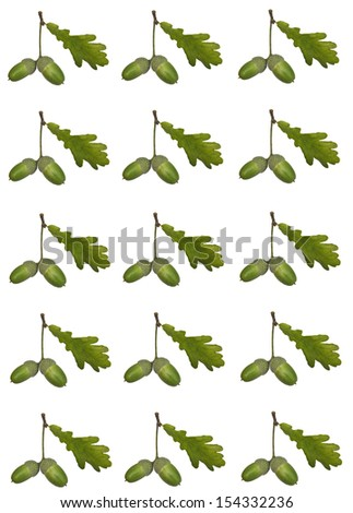 Acorns pattern - stock photo