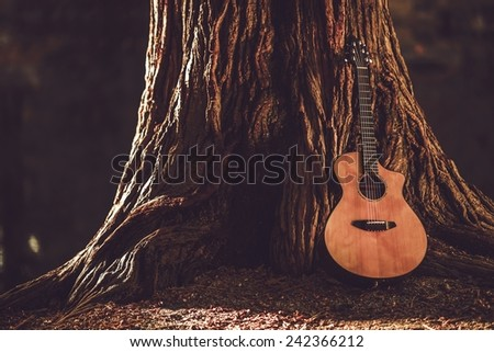 Acoustic Guitar and the Old Tree. Music Theme with Acoustic Guitar. - stock photo