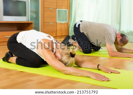 Active elderly couple warming up muscles before exercising at home - stock photo
