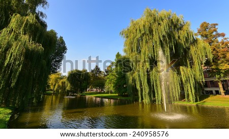 Active fountain in the middle of a pond in Rotterdam - stock photo