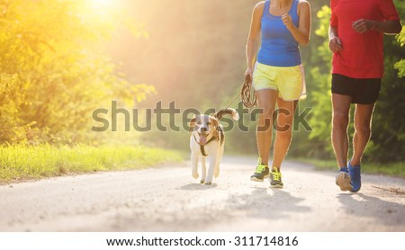 Active seniors running with their dog outside in green nature - stock photo